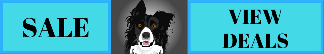 Special Deals Banner with Border Collie image